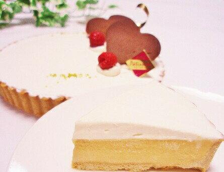 【低糖質スイーツ】タルトシトロン6号サイズ(18cm)糖質制限中の方やダイエット中の方にオススメ!甘酸っぱいレモンタルトです。