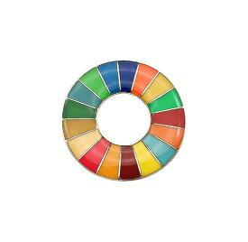 ピンバッジ SDGs 国連本部最新仕様 バッチ ピンバッジ 留め具 公式 襟章 丸み仕上げ 人気 おしゃれ ギフト 最新仕様