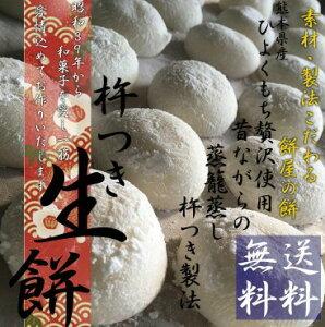 送料無料 熊本県産ひよくもち使用 無添加 安心 白餅10個入 2袋セット 餅 お餅 国産 杵つき餅 和菓子 もち おもち 小分け パック お雑煮用 ぜんざい用 こし
