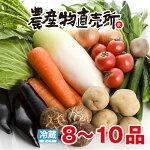 伊豆村の駅新鮮獲れたてお野菜詰合せ(8〜10品)