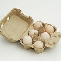 伊豆三島卵屋「鳥骨鶏のたまご」