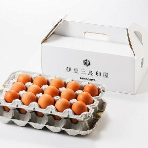 【ギフト】伊豆村の駅で定番・人気「日の出たまご」30個★たまごのおいしさ際立つ、たまごかけごはんで食べてください!【楽ギフ_包装】【楽ギフ_のし】【camp】