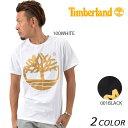 送料無料 メンズ 半袖 Tシャツ Timberland ティンバーランド AF METLC FOIL TREE T TB0A1T8R EE1 C28