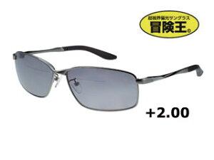 視泉堂/シセンドウ BFS-5S バイフォーカルスポーツ [老眼入偏光グラス] (フレーム:ガンメタ) 【+2.00】