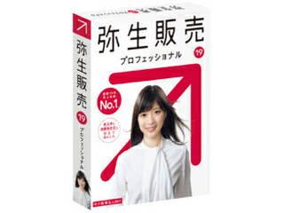弥生販売19プロフェッショナル通常版<新元号・消費税法改正対応>