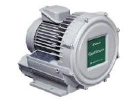 【組立・輸送等の都合で納期に1週間以上かかります】 Showa/昭和電機 【代引不可】電動送風機 渦流式高圧シリーズ ガストブロアシリーズ(0.4kW) U2V-40T