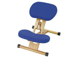 MIYATAKE/宮武製作所 【納期3月末以降】【姿勢を正しく保つ椅子!】プロポーションチェア CH-88W ブルー