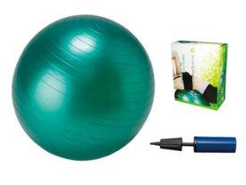 【nightsale】 LEZAX/レザックス IBFG-5758 IDEAL BODY フィットネスボール 55cm (緑)