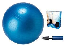 【nightsale】 LEZAX/レザックス IBFG-5759 IDEAL BODY フィットネスボール 65cm (青)