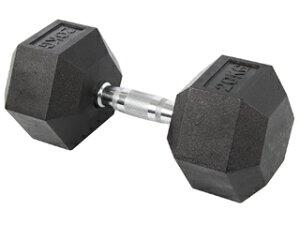 ABsports/ABスポーツ フィットネス・トレーニング PU六角型スチールダンベル/20KG DB-07 50139