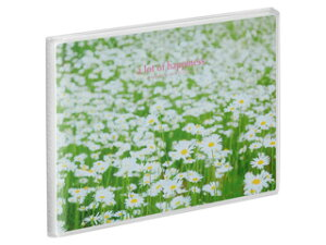 HAKUBA ハクバ APNP-KGY-SHB(白い花畑) Pポケットアルバム NP ポストカードサイズ 横 20枚収納