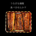 最高級うなぎ 国産  ギフト お取り寄せ 蒲焼き 丑の日 鹿児島鰻 送料無料 高級鰻 生産量全国1位 特賞 国産うなぎ蒲焼き