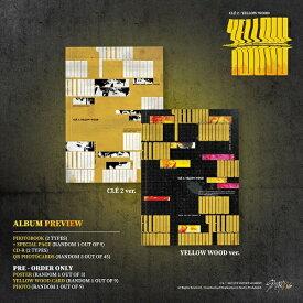 Stray Kids - Cle 2 : Yellow Wood バージョン選択可能 CD 韓国盤