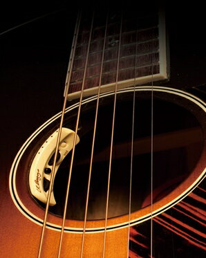 【レビューを書いて次回送料無料クーポンGET】L.R.BaggsANTHEM[並行輸入品][直輸入品]【エルアールバッグス】【新品】【ギター用ピックアップ】【RCP】
