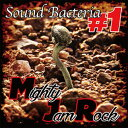 [予約特典ポイント10倍]MIGHTY JAM ROCK / SOUND BACTERIA #1