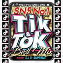 DJ B-SUPREME / TIK & TOK-SNS NO.1 BEST MIX-