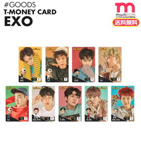 ★SALE★送料無料★ 【 EXO T-money カード EXO × GS25 限定商品 】[即日] エクソ EXO × GS25 公式商品 韓国 交通カード 【代金引換不可】【コンビニ後払い不可】