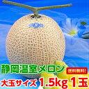 お中元 送料無料 メロン フルーツギフト生産地ならではのこだわりメロン大玉静岡温室メロン1.5kg×1玉(化粧箱入り)【北海道、沖縄、一部離島は別途500円】