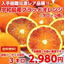タロッコ ブラッド オレンジ