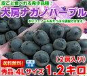 高評価レビューが物語る驚きの美味しさ!!皮ごと食べられるブドウ♪ナガノパープル秀品4Lサイズ 1.2kg(2房入り)【北…