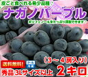 高評価レビューが物語る驚きの美味しさ!!皮ごと食べられるブドウ♪ナガノパープル秀品3Lサイズ以上 2kg(3〜4房入り)…