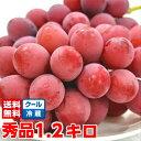 プロの間で大注目の赤色ブドウ新品種濃厚な甘味と豊かな香りは絶品♪長野県産クイーンニーナ 秀品4Lサイズ 1.2Kg北海…