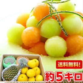 個性豊かな果汁たっぷり♪5種類以上の旬のフルーツが楽しめる店長のきまぐれ初夏のフルーツ福袋 たっぷり5kg北海道、沖縄・一部離島は発送不可