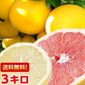 お砂糖は必要ありません!日本向けグレープフルーツの最高峰!フロリダ産完熟グレープフルーツ3kg北海道、沖縄・一部離島は発送不可