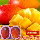 母の日 プレゼント ギフト 送料無料一年に一度の最高の贅沢♪中玉宮崎完熟マンゴー秀品・Lサイズ2玉母の日メッセージ…