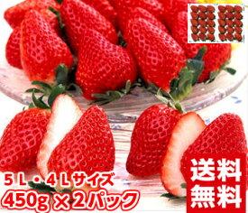 静岡生まれの2大いちごが夢の共演♪大粒章姫&紅ほっぺいちご450g×2パック【お届けに2日以上かかる地域は発送不可】