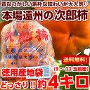 北海道、沖縄・一部離島は発送不可味は変わらないためご家庭用に最適♪静岡県遠州森町・敷地産規格外次郎柿 産地徳用…