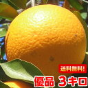 今シーズン最後の売尽くし価格!高級柑橘の生みの親になる優良品種!木成り清見タンゴール 優品3kg【北海道800円・沖…