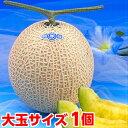 お中元 ギフト プレゼント メロン生産地ならではのこだわりメロン大玉静岡温室メロン1.5kg×1個(化粧箱入り)【北海…