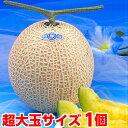 お中元 ギフト プレゼント メロン生産地ならではのこだわりメロン超大玉静岡温室メロン1.7kg×1個(化粧箱入り)【北…
