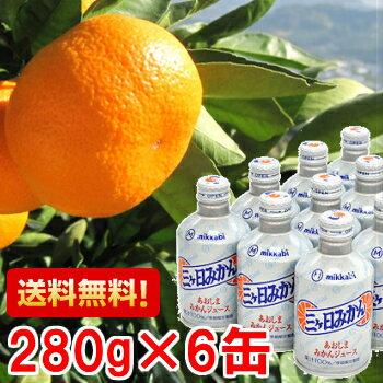 三ヶ日青島ジュース6缶入り1箱