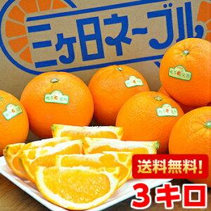 木熟のため表皮にキズがあります!三ヶ日越冬完熟ネーブルオレンジ3kg北海道、沖縄・一部離島は発送不可