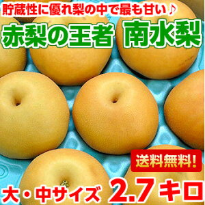 送料無料 南水梨 梨 フルーツギフト高い糖度とシャキシ...
