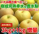 送料無料 幸水梨 豊水梨 フルーツギフトハイテク光センサー選果で糖度保障!贅沢な2大赤梨の食べ比べ♪樹成り完熟大玉…