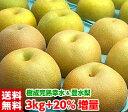 ハイテク光センサー選果で糖度保障!贅沢な2大赤梨の食べ比べ♪樹成り完熟大玉幸水梨&豊水梨3kg+20%増量【送料無料・…