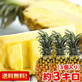 手でちぎって食べられる♪沖縄県石垣島産スナックパイン2Lサイズ 約3kg(3個入り)北海道、沖縄・一部離島は発送不可