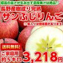 【送料無料】【ご家庭用】【りんご】見た目を気にしなければお買い得♪長野産樹成り完熟サンふじりんご5kg【北海道、…