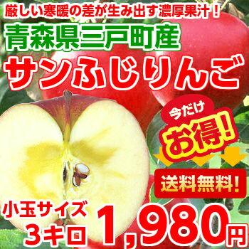 【送料無料】【りんご】【お試し価格】ひと味違う濃厚果汁たっぷり♪知る人ぞ知る名産地!青森三戸産サンふじりんご小玉3kg【北海道、沖縄、一部離島は別途500円】