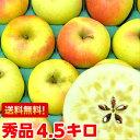 サンふじ以上とも言われる美味しさ♪樹成り完熟ぐんま名月4.5Kg【北海道800円・沖縄、一部離島1,000円】