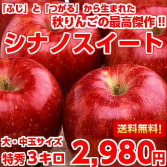 "Professionals also appreciate autumn Apple masterpiece! (Fuji) and ""one up"" from Thoroughbred Apple chief wild was born in rare Shinano Suite special Su products 3 kg"