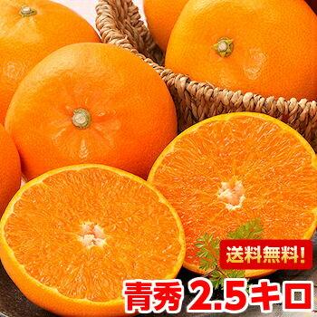 柑橘界最高レベルの美味しさ♪至高の柑橘!チョイキズせとか 青秀2.5kg【北海道・沖縄・一部離島は別途800円】
