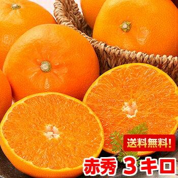 柑橘界最高レベルの美味しさ♪至高の柑橘!ご贈答用せとか 赤秀3kg【北海道・沖縄・一部離島は別途800円】