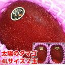 お中元 ギフト 太陽のタマゴ フルーツギフト入手困難!超プレミアムサイズ!!宮崎産完熟マンゴー「太陽のタマゴ」プ…