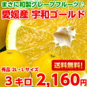 【送料無料】やっぱり国産は味と香りが違う♪和製グレープフルーツと呼ばれる柑橘愛媛産宇和ゴールド 秀品3kg【北海道…