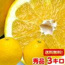 やっぱり国産は味と香りが違う♪和製グレープフルーツと呼ばれる柑橘愛媛産宇和ゴールド 秀品3kg【北海道800円・沖縄・一部離島1,000円】