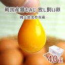 放し飼い卵 40個 純国産鶏 もみじ 岡山県美作市産 天真卵まん 赤玉 非遺伝子組換飼料 送料無料